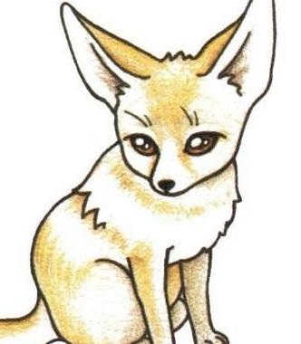 什么的狐狸填词语_描写狐狸的词语